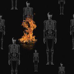 #graphic #graphicdesign #artwork #art #pattern #black #black and white #poster #skull