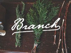 Brand #graphic design #design #typography #lettering