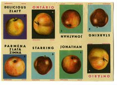 Matchbox covers #fruit