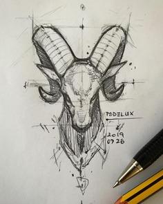 Bighorn Sheep 🐏