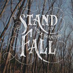 fall #type #typography