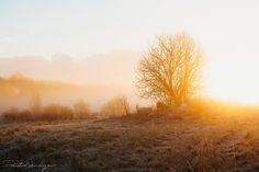 Dmitri Shushuyev #photography #landscape