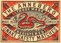 Typography / snake #type #vintage #label