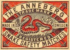 Typography / snake