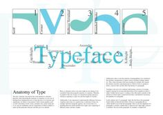 Design and Inspirations - ANATOMY OF TYPE #type #of #anatomy #poster