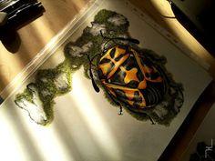 Pencil art #insect #pencil #drawing #art