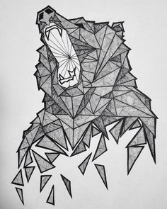 Geometric Bear Sketch