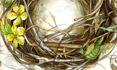 """""""Nested"""" Typography Home Sweet Home #paint #type #watercolor #nature"""