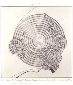 Concentric Field from Lebbeus Woods' series Centricity, 1987 #urban