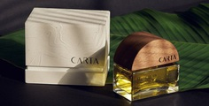 Carta Branding - Mindsparkle Mag