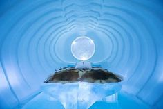 ICEHOTEL with bedroom and warm ice bed #hotel #ice #art