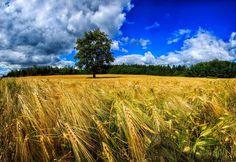 Landscape Photography by Gen Vagula