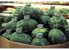 Gabriel Orozco #store #photo #grocery #orozco