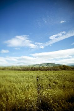 Ivan Lesko Blog» Blog Archive » Ellensburg Write Up #grassy #landscape #photography #time #day #fields