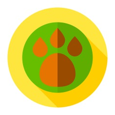 See more icon inspiration related to pet, paw, pawprint, footprint, animals and animal on Flaticon.