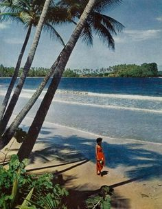 Beach at Sena Bay in Trinidad National Geographic | January 1953 #geographic #nat #beach #geo #national #trinidad