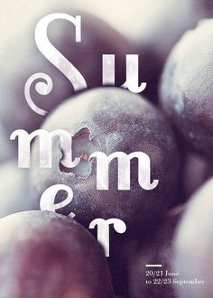 Four Seasons Typographic Posters