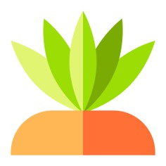 See more icon inspiration related to flower, plant, spiked, botanical, desert, plants and nature on Flaticon.