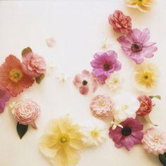 floralmix #floral #flowers