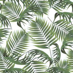 Palm #pattern #palm #tropical