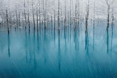 awWaJ.jpg 1,247×831 pixels #lake #cyan #snow #trees