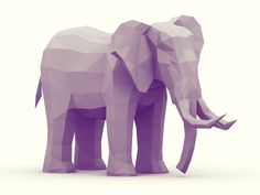 Low Poly [Animal Kingdom] on Behance