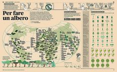 Per fare un albero   Flickr: Intercambio de fotos #business #infographic #editorial #magazine