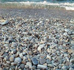 the coast #coast #the