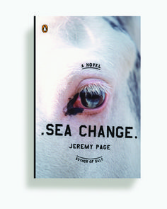 Sea Change Kristen Haff #book