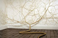 Untwisted Ropes Sculptures Stick on Walls Look Like Tree
