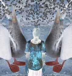 He Ent to the Blog : 4 of 4 #cubes #cold #pelican #digital #explode #collage