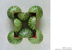 PhotoPojects 05WM 04.jpg #watermelons #art