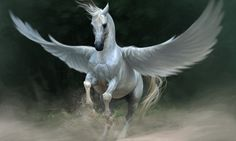 Fantasy Horse Unicorn Black Best Hd Wallpaper Download – WallpapersBae