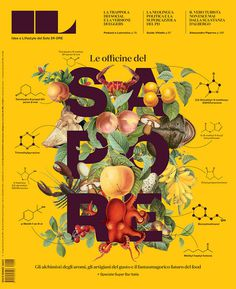 IL Sole 24 Ore #food #illustration #covr #type #magazine
