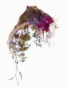 sve20130902g007 #slve #exposure #portrait #sundsb #double #flowers