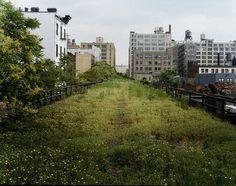 Joel Sternfeld   Friends of the High Line #line #york #nyc #high #new