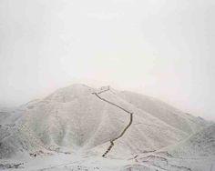Habitats by Wang Yuanling