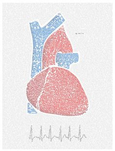 Stephen-_heart.png 803×1055 pixels