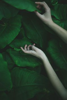 riverofbones: vintage & summer ❂ #green #hands