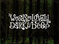 Typeverything.com The Woods are Lovely by Jeff Jenkins. #quote #typography
