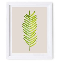 Artwork featuring the illustration of a graceful long leaf with delicately shaded leaflets. #print #illustration #nature #wall #poster #art