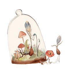 KelseyGarrityRiley #botanical #illustration #floral