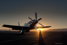 Aviation   Moose Peterson's Website