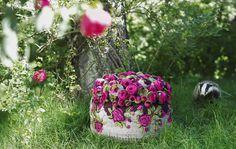 Bommel collection - Pompon by Myra Klose - www.homeworlddesign. com (9) #furniture #design #pompons #carpets