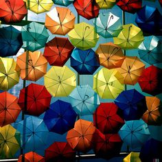 CJWHO ™ (Hundreds of Floating Umbrellas Once Again Cover...)