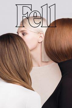 magazine, editorial
