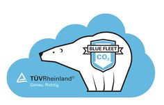 illu_tuev_1 #logo #illustration #bear