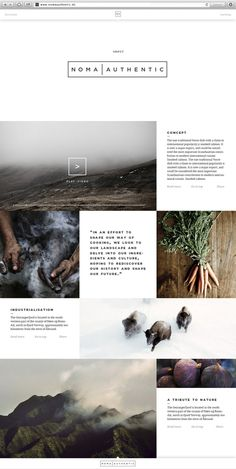 Noma Authentic | Website #minimal #layout #website #web design