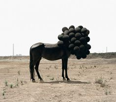 Death of an Image – Andrea Galvani | The Design Ark