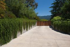 Covered-driveway-landscape-contemporary-with-wood-slat-fence-concrete-wall-wood-slat-fence.jpg (990×660)